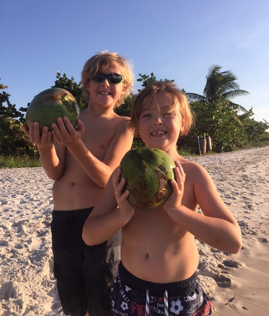 first-coconuts-found